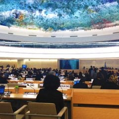 GWI Addresses 34th session of the Human Rights Council